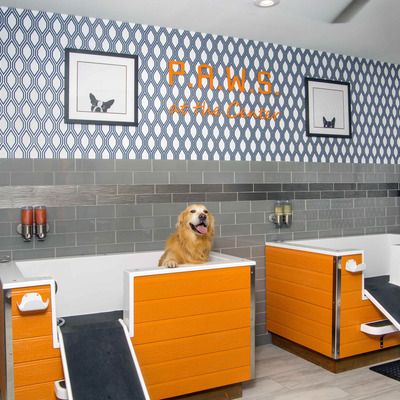 P.A.W.S (Pamper and Wash Salon) Pet Spa